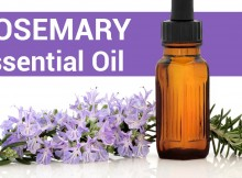 Today there is a trend of utilizing essential oils for medical aims that becomes popular to a greater extent. Anyway, as said by Modern Essentials, a guide for remedial uses of essential oils, rosemary essential oil is the greatest and most helpful ones. First-class rosemary oil has powerful antibacterial, anticancer, analgesic, anti-infection, antioxidant, antifungal, expectorant, and anti-inflammatory properties. Health Benefits of Rosemary Essential Oil - Respiratory Problems – there is certain evidence that the smell of this oil could give relief from throat congestion. Additionally, it is really efficient for taking care of colds, flu, sore throat, and allergies. - Memory Booster – In the end, Shakespeare was right for saying that rosemary makes the memory better. As said by many researchers, when the essential oil from the herb is inhaled before, it allows people to memorize doing things. Many tests demonstrated that persons exposed to rosemary essential oil had 60-70% better memories related to people that haven't been exposed. Rosemary Essential oil could be utilized for healing a lot of health problems, like: - Clarity – Simply add a drop of Rosemary Essential oil to your hands and rub together. Also cup your nose and mouth for about 1 minute. - Cough - Put 1 to 2 drops on your chest and throat and rub every few hours. - Headaches - Add a drop to your hands. Cup your nose and mouth for one minute. You could also apply a drop topically on painful parts of your head and rub smoothly. - Vaginal infection - Rub 1 or 2 drops in or around the vagina. Take care for test for sensitivity before internal use. - Learning and memory - Inhale the oil straight from a bottle, disperse it around the room, rub to your toes, or over your temples regularly. Drop two drops of Rosemary Essential oil on the shower floor with intention to clear your sinuses. You will also better your memory, improve your immune system, and avert colds!